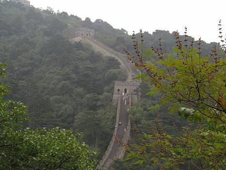 Alfred Ng - great wall of China