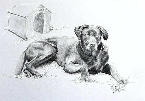 Hershey by Joette Snyder
