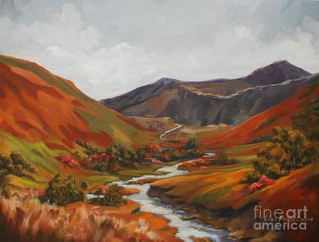 Highland Stream by Lisa Phillips Owens