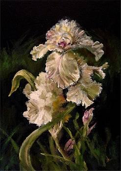 Diane Kraudelt - Iris In Bloom 3