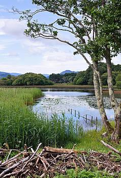 Jane McIlroy - Killarney Lakeside Scene