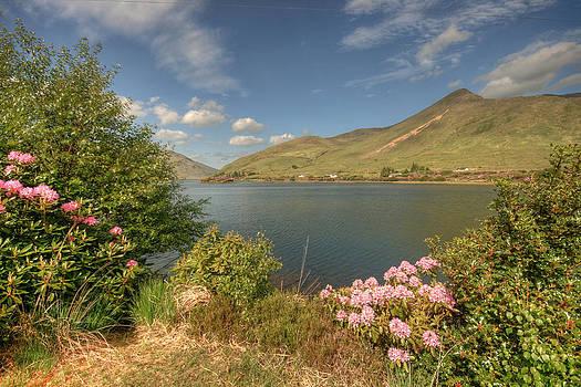 Killary Harbor View by John Quinn