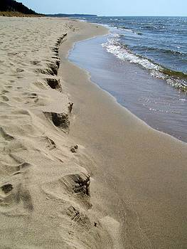 Michelle Calkins - Lake Michigan Shoreline
