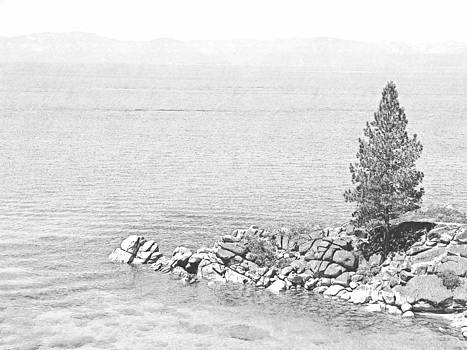 Frank Wilson - Lake Tahoe Rocky Point