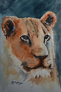 Lioness by Betty Mulligan