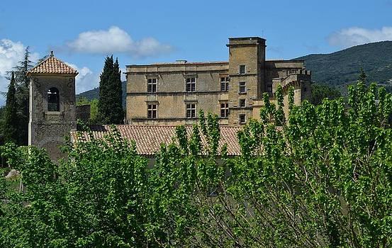Lourmarin Castle by Dany Lison