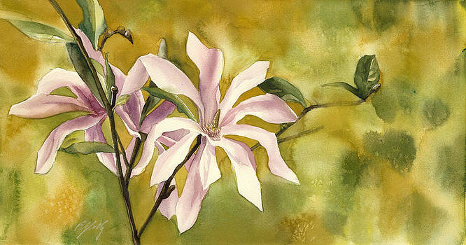 Alfred Ng - magnolia in spring