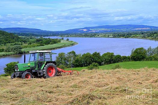 Joe Cashin - Making hay in Ireland