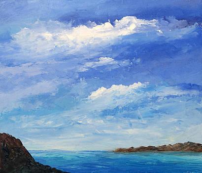 Mare by Niki Mastromonaco