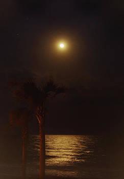 Moon Over Myrtle Beach by Joan Powell