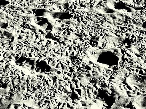 'Moonscape Beach' by Liza Dey