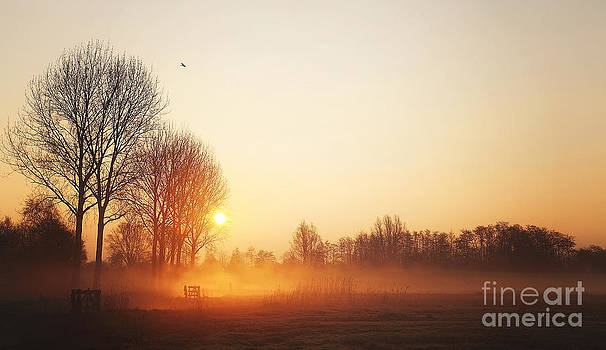 LHJB Photography - Morning moods