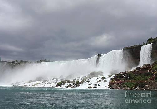 Niagara Falls  by Freda Sbordoni