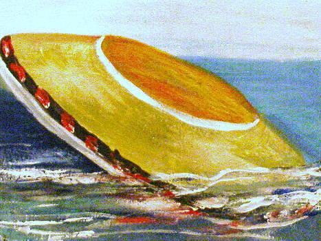 Ocean Visitor  by Ann Teicher
