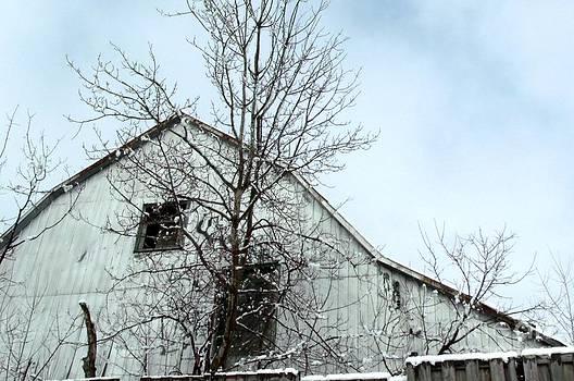 Gail Matthews - Old Barn Loft Window from days gone by