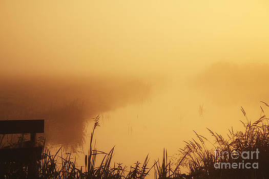 LHJB Photography - On a foggy morning