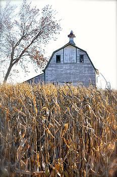 Christine Belt - Otoe County Barn