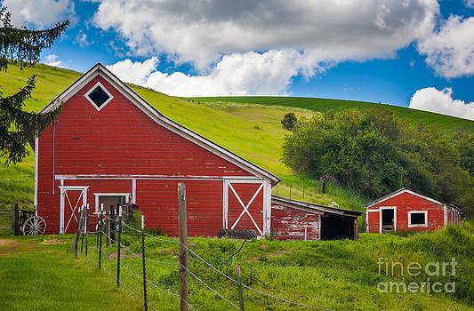 Inge Johnsson - Palouse Farm Landscape
