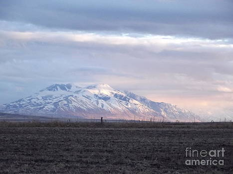 Purple Mountains Majesty by Woody Wilson