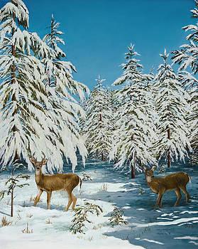 Romance Snow Scene by Mary Ann King