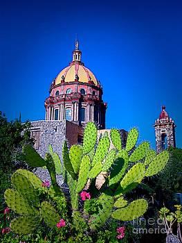 San Miguel De Allende by Nicola Fiscarelli