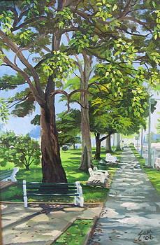 Savannah Walk by Samantha Rochard