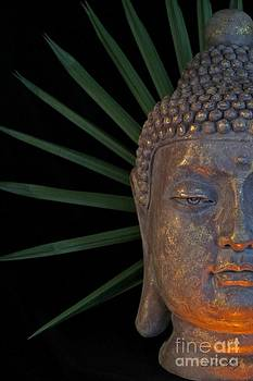 Eyes of Buddha by Dodie Ulery