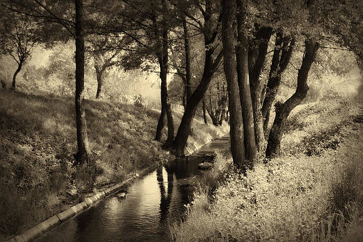 Sepia landscape by Peter Fodor