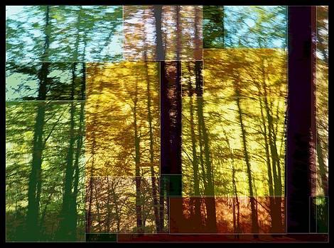 Sous Bois by Gerard Jacques Odot