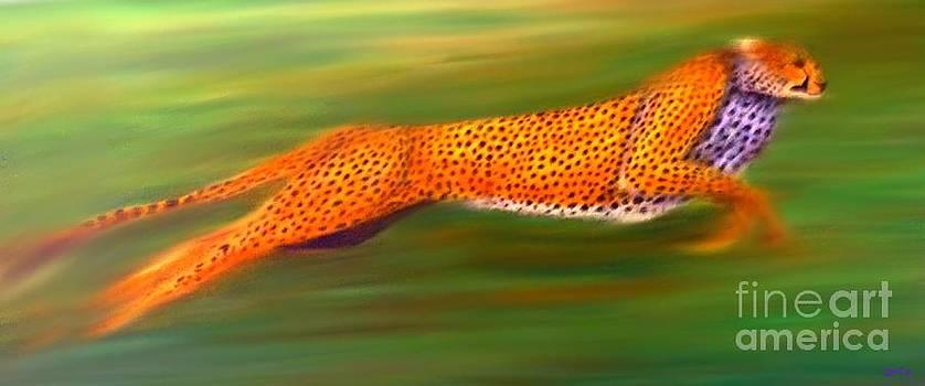 Nick Gustafson - Streaking Cheetah