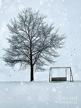 Sandra Cunningham - Summer swing abandoned in snow beside tree