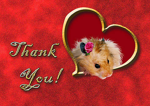 Jeanette K - Thank You Hamster