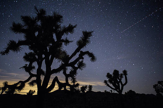 The Star-filled Night Sky Over Lost by Kent Kobersteen