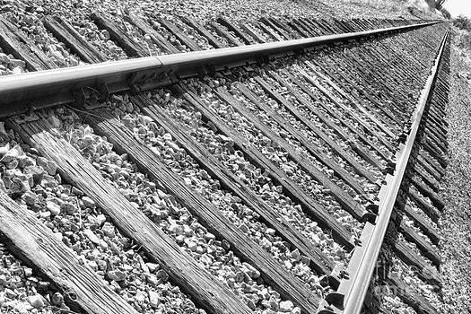 James BO  Insogna - Train Tracks Triangular in Black and White