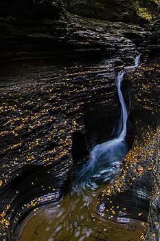 Watkins Glen Falls by Kaye Seaboch