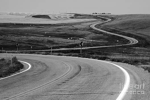 Winding Road by Sue Smith