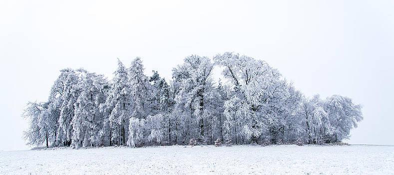 Thomas Christoph - winter