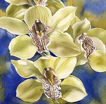 Alfred Ng - yellow cymbidium orchid
