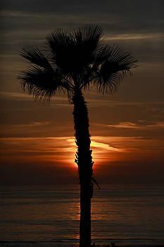 2014 Sunset  by Mark DeJohn