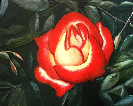 Betty Boop Rose by June Holwell