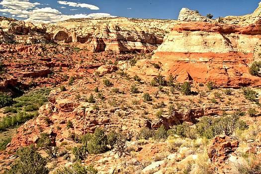 Adam Jewell - Calf Creek Falls Canyon