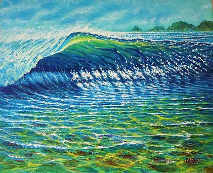 Dolphin Surf by Joseph   Ruff