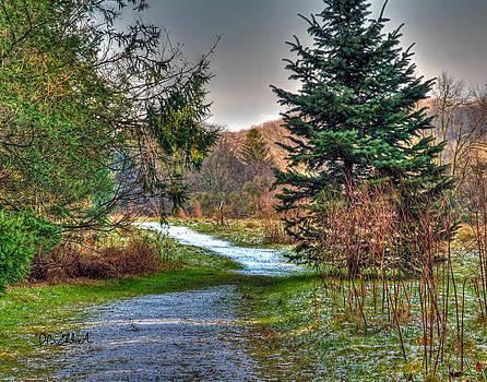 Early Winter 2 by IB Ehrlich