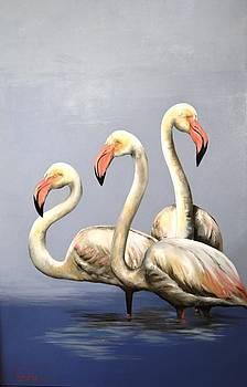 3 Flamingoes by Vanessa Lomas