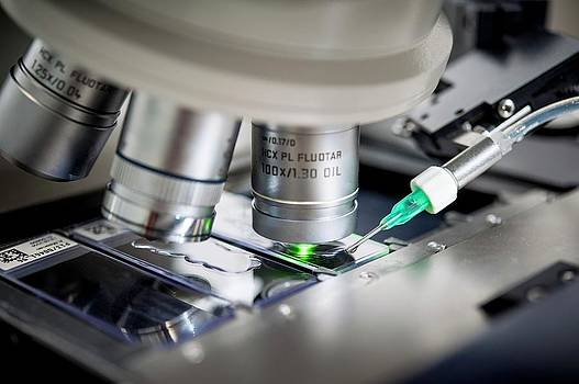 Genetic Metaphase Analysis by Arno Massee
