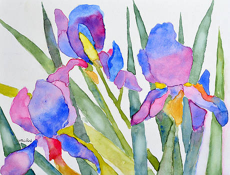 Irises by Wade Binford