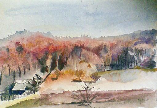 Late Fall by Vaidos Mihai