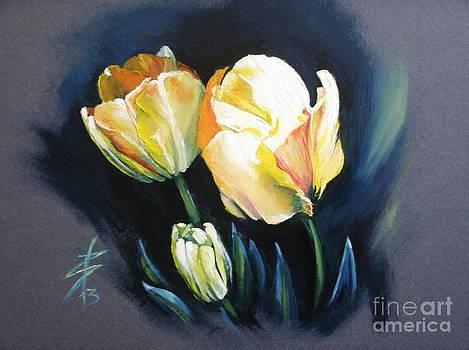 Tulips by Alessandra Andrisani