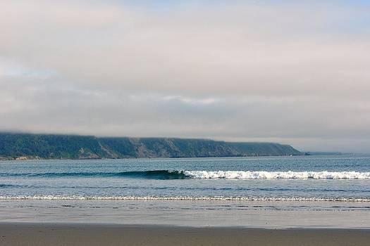 Oregon coast by Melissa Pollock