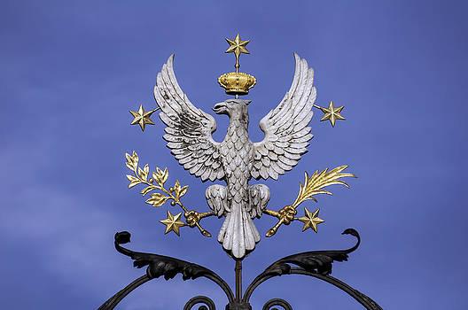 Polish eagle. by Fernando Barozza